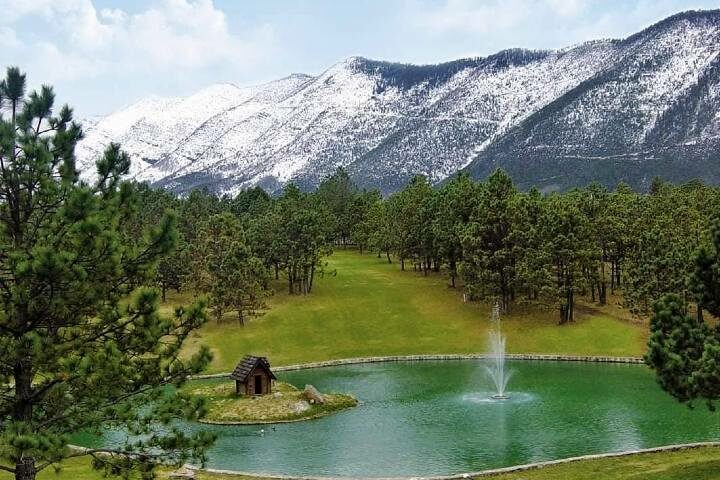 Campo de Golf en Monterreal Foto Bosques de M.