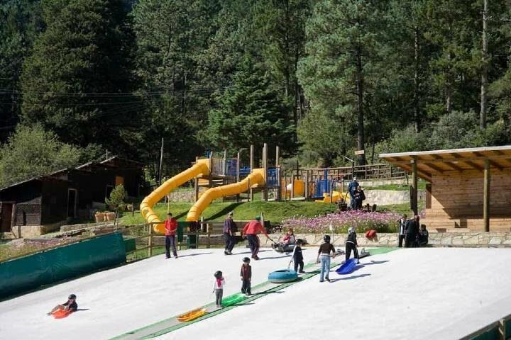 Pistas de esquí. Foto: Bosques de Monterreal